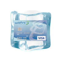 Credit card frozen in ice